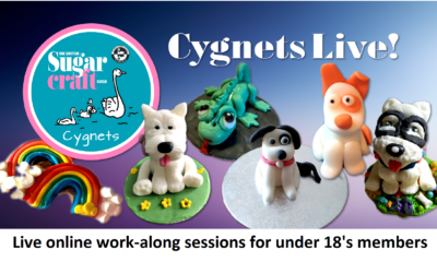 Cygnets Live!