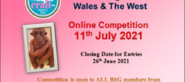 Online Competition Day: Region 5