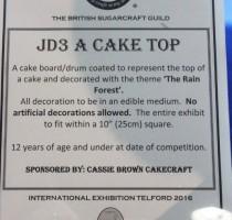 JD3 Class - A Cake Top