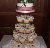 R4 Julie Cotton - Region 4 Cupcake Wedding