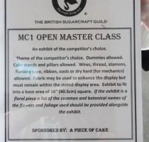 MC1 - Open Master Class