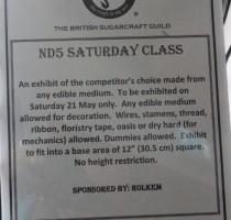 ND5 Class - Saturday