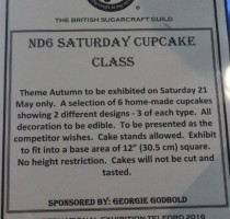 ND6 Class - Saturday Cupcakes