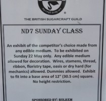 ND7 Class - Sunday