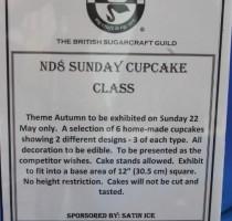 ND8 Class - Sunday Cupcakes