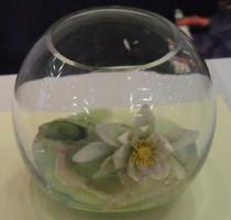R1 2011 bowl
