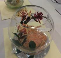R1 2011 bowl honeysuckle