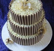 Chocolate - R8 Carolyn Harvey Tunbridge Wells Branch