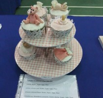 R7 Pink Cupcakes - Ann Dupen-Hopkins (Redbridge & District and Romford)
