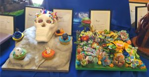 EDINBURGH COLLEGE DISPLAY