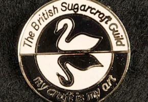 BSG Lapel Pin
